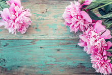 Background With Pink Peonies On The Old Boards With Shabby Blue