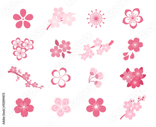 Cherry blossom japanese sakura vector icon set Wall mural