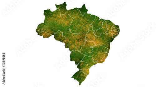 Fotografía  Brazil tropical texture map