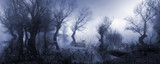 Fototapeta Fototapety z naturą - Creepy landscape showing misty dark swamp in autumn.