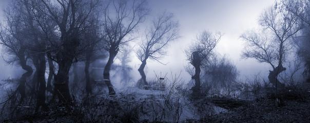 Przerażający krajobraz pokazujący mgliste ciemne bagno jesienią.