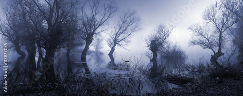 Fototapeta  Creepy landscape showing misty dark swamp in autumn.