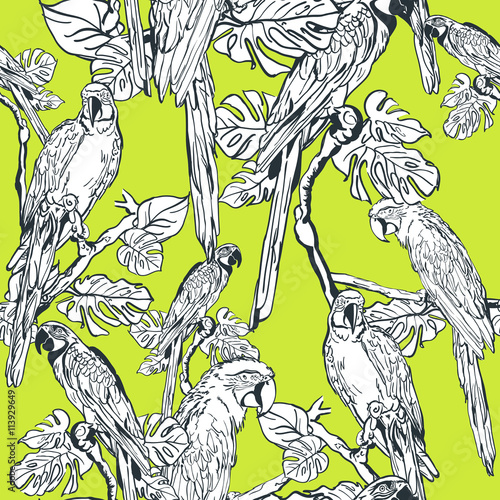 vector-seamless-pattern-with-parrot