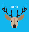 Deer. Abstract Deer. Cartoon deer. Deer portrait isolated on blue. Nature and wild theme. Graphic deer head. Deer gaze. Deer closeup. Deer portrait for card, book, sketch book, note book. Raster copy