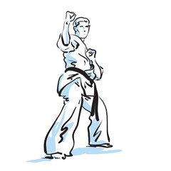 Fototapeta Sztuki walki karate fighter, vector illustration