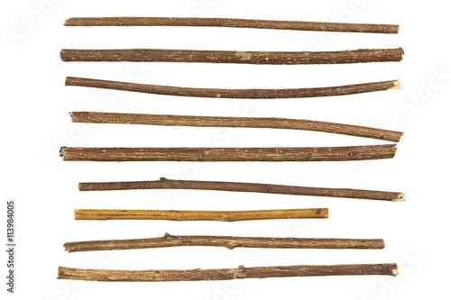 twig Fototapeta