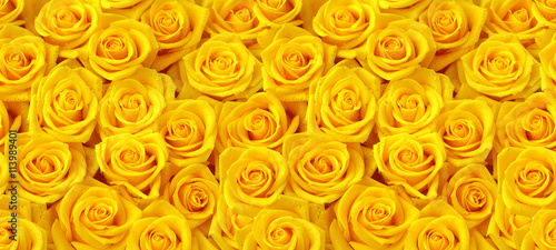 Foto op Canvas Roses Yellow roses seamless pattern
