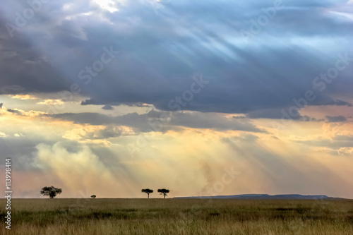 Sky with rays of light in the African savannah in the sunset