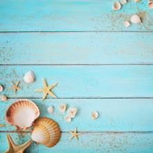 Seashells Frame Background On Wooden Board