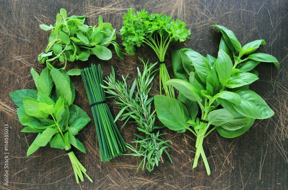 Fototapety, obrazy: Collection of fresh herbs on wooden background