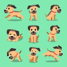 Cartoon Character Border Terrier Dog Poses