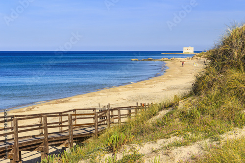 In de dag Australië The Regional Natural Park Dune Costiere (Torre Canne): wooden walkway between sea dunes. (Apulia)-ITALY- The park covers the territories of Ostuni and Fasano along eight kilometers of coastline..