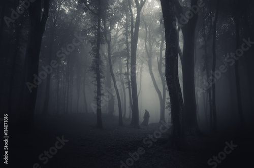 spooky figure in dark forest Canvas Print