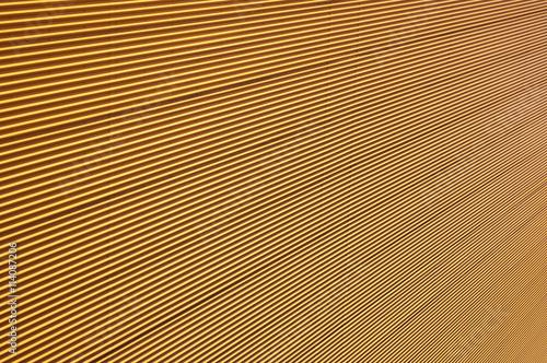 Aluminium Prints Macro photography Hypnotic yellow wall