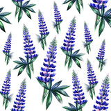 Watercolor lupines seamless pattern. Spring flower. Floral background. - 114105053