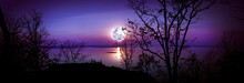 Panorama. Silhouettes Of Woods And Beautiful Moonrise, Bright Full Moon.