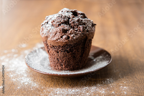 Acrylic Prints Cat Chocolate muffin with powdered sugar