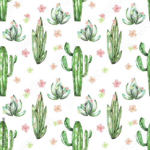 A seamless pattern with the watercolor various kinds of cactuses and a seamless pattern with the watercolor various kinds of cactuses and flowers hand drawn on mightylinksfo