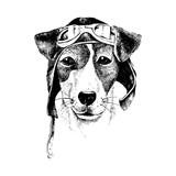 Hand drawn dressed up dog aviator - 114128033