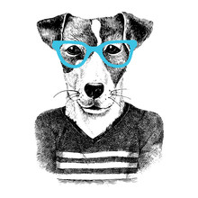Dressed Up Dog In Hipter Style