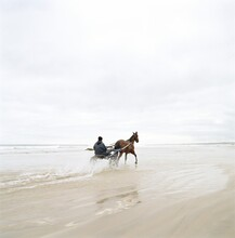 Horse And Cart Racing Along Beach
