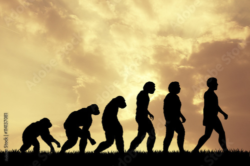 Human evolution Canvas