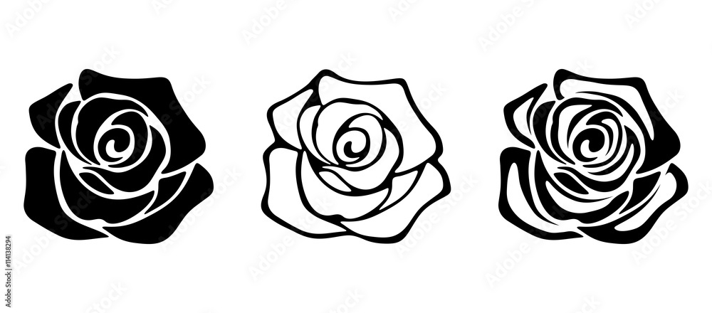 Fototapety, obrazy: Set of three vector black silhouettes of rose flowers isolated on a white background.