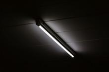 Detail Of A Fluorescent Light Tube