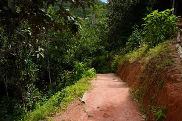 Fototapeta na wymiar Seychellen