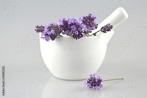 Lavender flowers in a mortar - 114183202