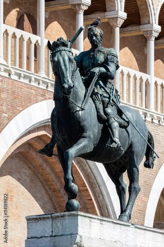 Equestrian statue of the Venetian general Gattamelata (Erasmo da Narni) in Padua, Italy Wallpaper Mural