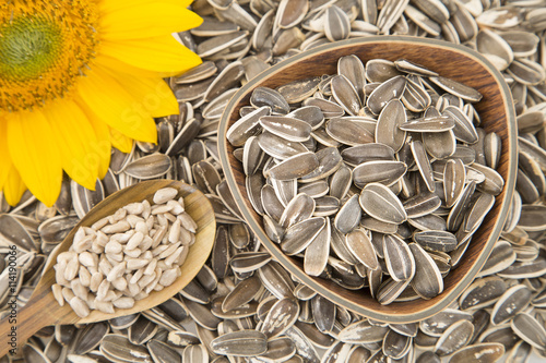 In de dag Zonnebloem Rich and nutritious sunflower seeds