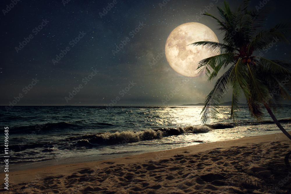Fototapety, obrazy: Beautiful fantasy tropical beach with Milky Way star in night skies, full moon - Retro style artwork with vintage color tone (Elements of this moon image furnished by NASA)