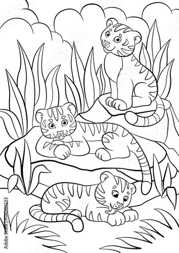 Wild Animal Coloring Pages For Preschoolers | 500x354
