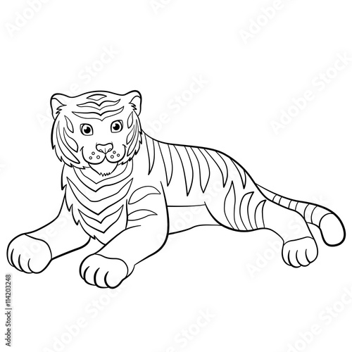 Free Cute Baby Tiger Coloring Pages, Download Free Clip Art, Free ...   500x500