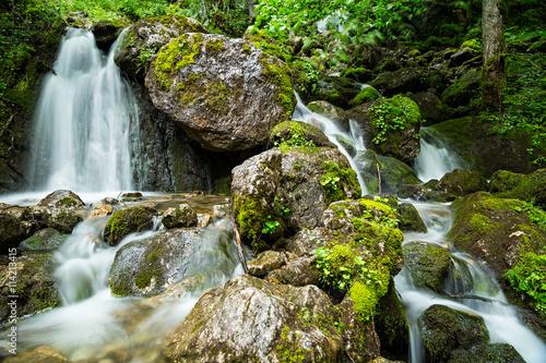 natural waterfall in the forest / natürlicher Wasserfall im grünen Wald