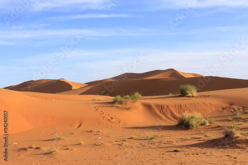 Poster de jardin Desert de sable Erg Chebbi Morocco