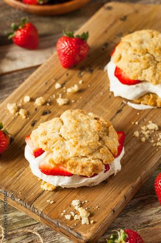 Fotografia, Obraz Homemade Strawberry Shortcake with Whipped Cream