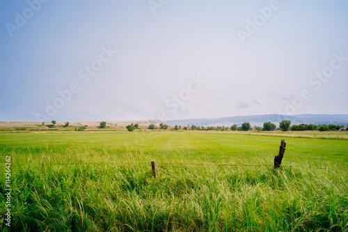 Wire fence on lush green farmland