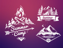 Summer Camp And National Park  Typography Design On Colored Background