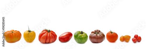 Photo rangée de  tomates - variétés anciennes isolées sur fond blanc