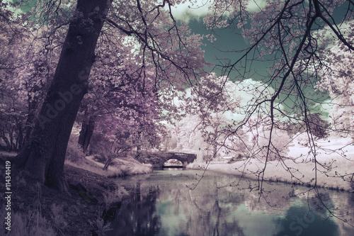 Printed kitchen splashbacks Eggplant Stunning infrared landscape image of old bridge over river in co