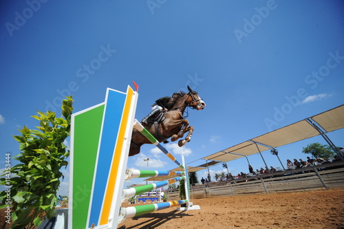 Fotografie, Obraz  Bottom view on the horse jumping over obstacles with the rider on the horseback