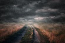 The Road In The Rain