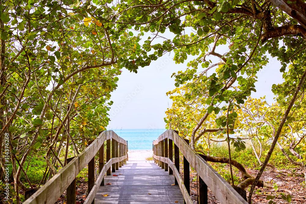 Fotografía Florida bonita Bay Barefoot beach US