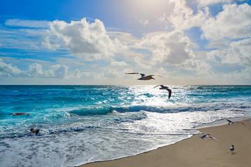 FototapetaSinger Island beach at Palm Beach Florida US