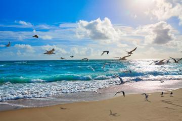 Panel Szklany Do salonu Singer Island beach at Palm Beach Florida US