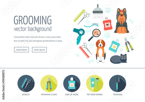 Fotografía  Grooming web design concept for website and landing page