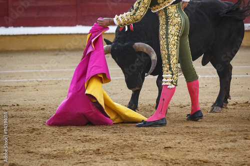 Photo Stands Bullfighting Torero toreando en la plaza. Tarde de toros. Fiesta Nacional.