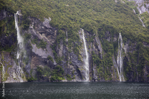 Photo  Waterfalls pooring down in Milford Sound.
